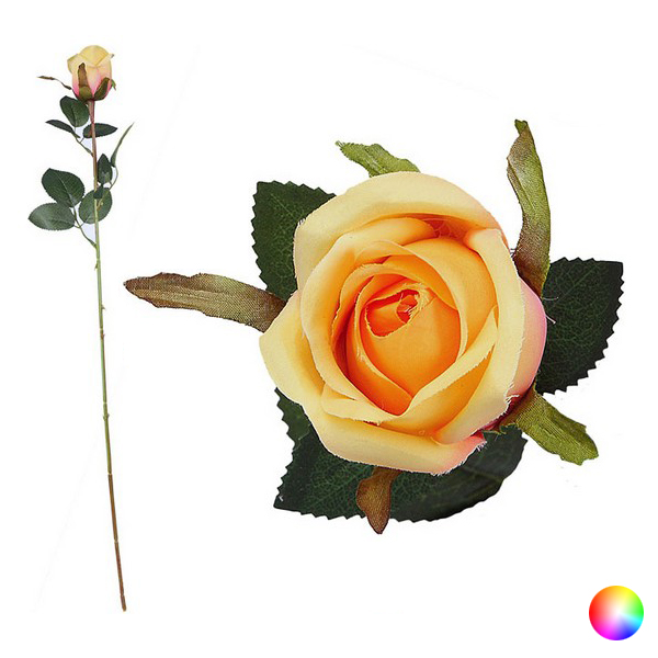 trandafiri pe penisuri)